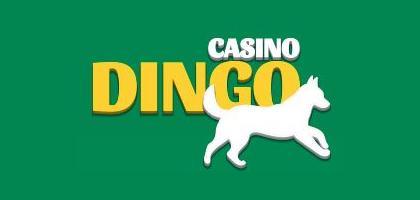 Dingo Casino-review